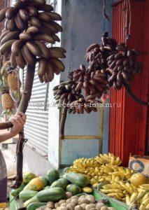 Бананы на базаре Шри-Ланка