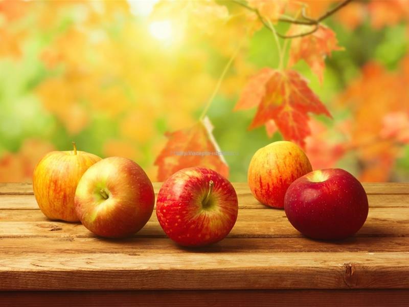 Яблоко на солнышке