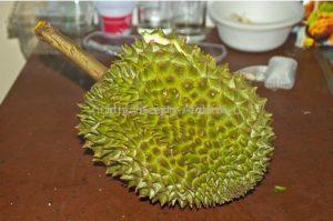 Родина дуриана Тайланд