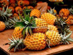 как выбрать спелый плод