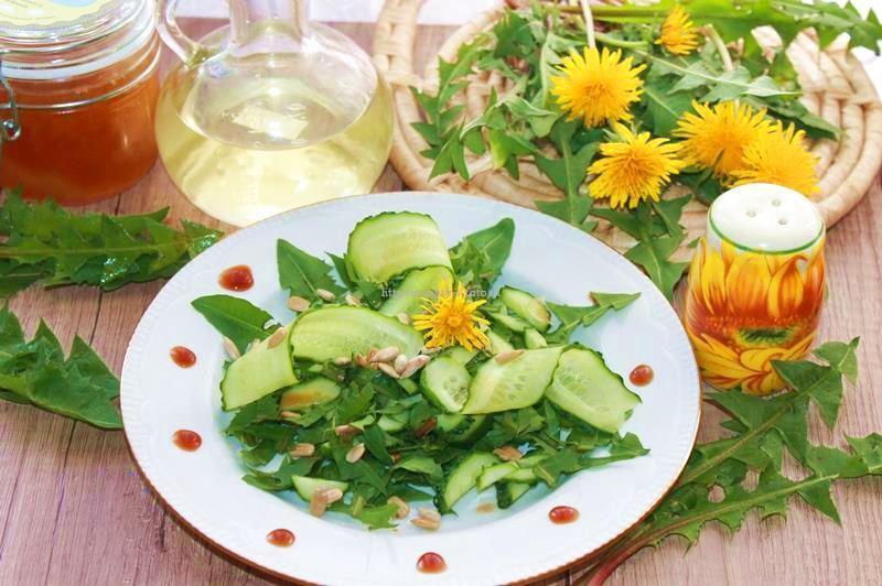Салат из одуванчиков. Витаминные рецепты.  Польза и вред