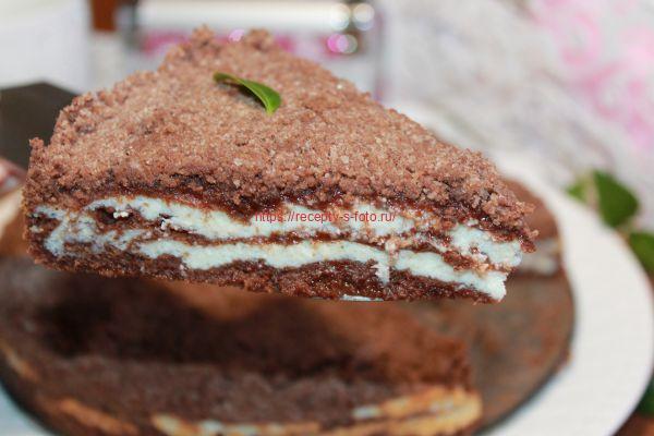 кусок пирога с творгом